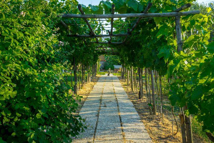 Giardino -Agriturismo Podere I Colli